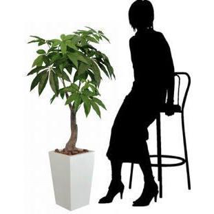 観葉植物 造花 光触媒 人工植物 グリーン /EX.ロイヤルパキラ135cm 129A38014|goodfellow|03