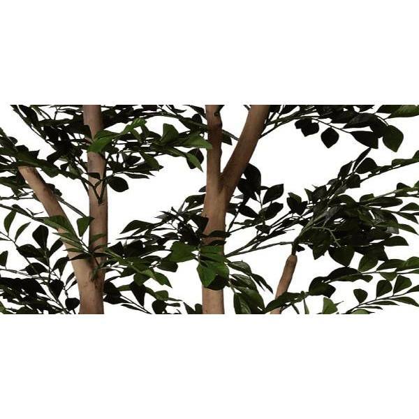 造花 観葉植物 光触媒 インテリアグリーン 鉢植え /トネリコ180cm 146A40019 goodfellow 02