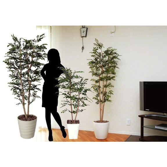 造花 観葉植物 光触媒 インテリアグリーン 鉢植え /トネリコ180cm 146A40019 goodfellow 03