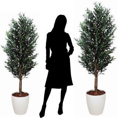 造花 観葉植物 光触媒 インテリアグリーン 鉢植え /オリーブ160cm 148A50025 goodfellow 03