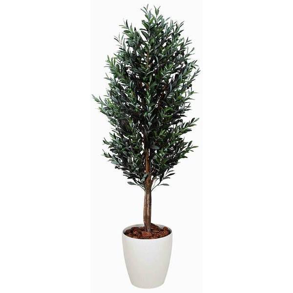 造花 観葉植物 光触媒 インテリアグリーン 鉢植え /オリーブ180cm 149B65025 goodfellow