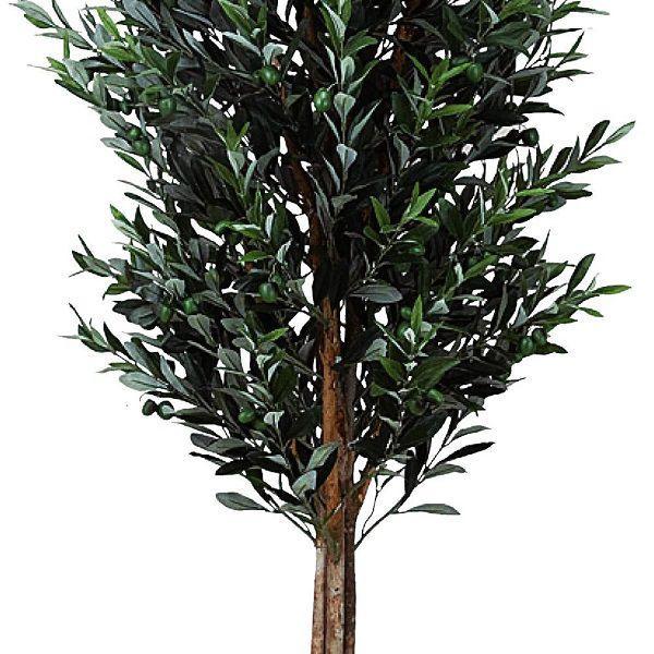 造花 観葉植物 光触媒 インテリアグリーン 鉢植え /オリーブ180cm 149B65025 goodfellow 02