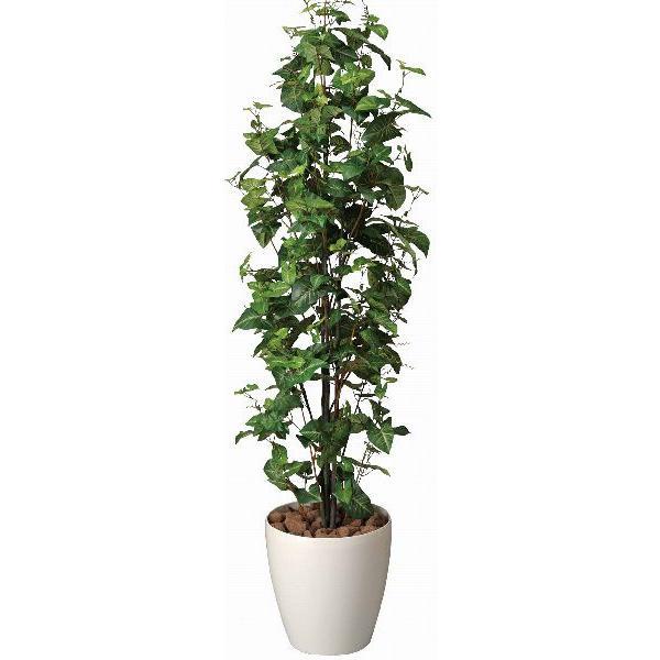 造花 観葉植物 光触媒 インテリアグリーン 鉢植え /シンゴニューム170cm 174A30022 goodfellow