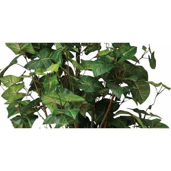 造花 観葉植物 光触媒 インテリアグリーン 鉢植え /シンゴニューム170cm 174A30022 goodfellow 02