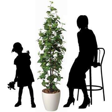 造花 観葉植物 光触媒 インテリアグリーン 鉢植え /シンゴニューム170cm 174A30022 goodfellow 03
