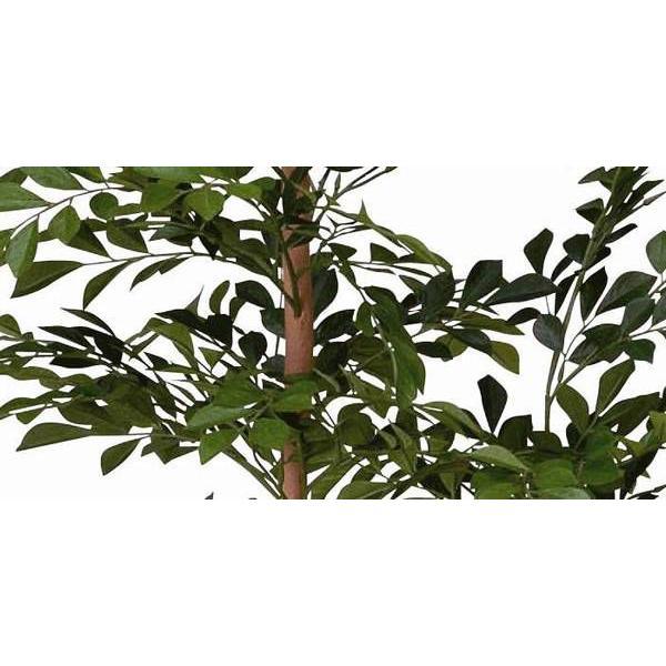 光触媒 観葉植物 鉢植え インテリアグリーン 造花 /トネリコ120cm 184B20030|goodfellow|02