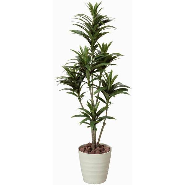 人工観葉植物 鉢植え インテリアグリーン 光触媒 造花 /ドラセナ・コンパクタ125cm 185A15018|goodfellow