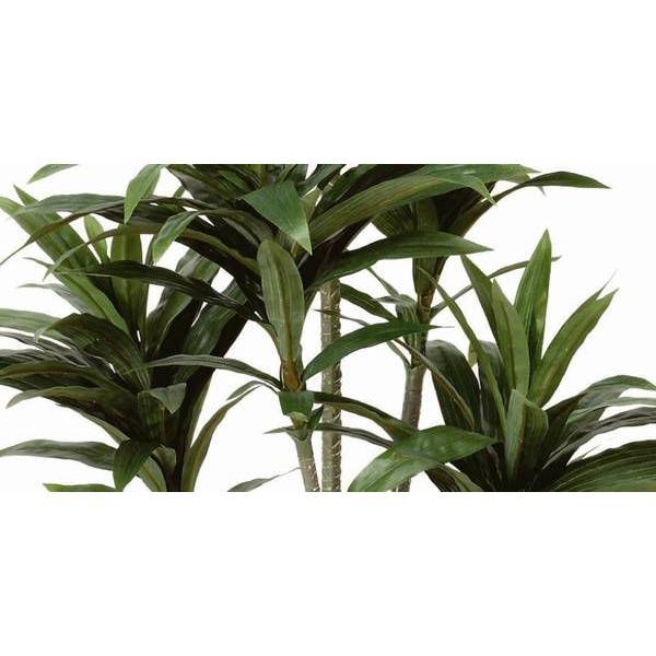 人工観葉植物 鉢植え インテリアグリーン 光触媒 造花 /ドラセナ・コンパクタ125cm 185A15018|goodfellow|02