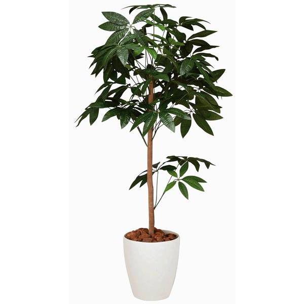 人工観葉植物 鉢植え インテリアグリーン 光触媒 造花 /パキラトピアリー150cm 194B25026 goodfellow