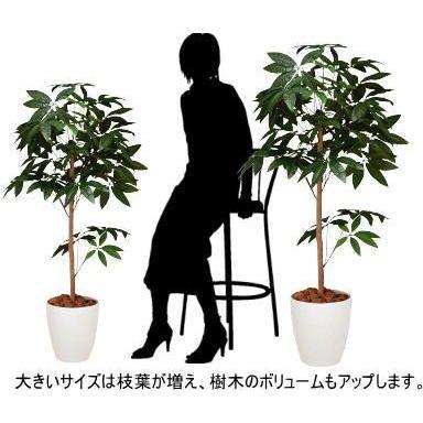 人工観葉植物 鉢植え インテリアグリーン 光触媒 造花 /パキラトピアリー150cm 194B25026 goodfellow 03
