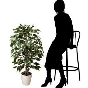 光触媒 観葉植物 鉢植え インテリアグリーン 造花 /ゴールデンフィカス 斑入り 100cm 202A15032 goodfellow 03