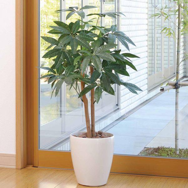 人工観葉植物 鉢植え インテリアグリーン 光触媒 造花 /パキラ90cm 209A10014|goodfellow