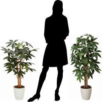 人工観葉植物 鉢植え インテリアグリーン 光触媒 造花 /パキラ90cm 209A10014|goodfellow|03