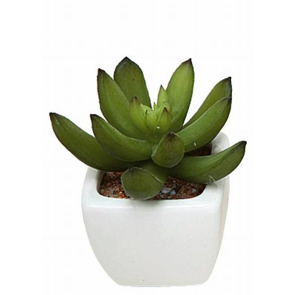 光触媒 観葉植物 造花 人工植物 グリーン・ポット /カクタス3点セット 231B3540|goodfellow|04