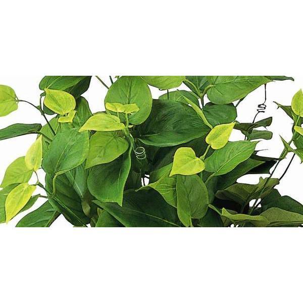 造花 観葉植物 光触媒 人工植物 グリーン /ライムポトス 247B5036 goodfellow 02