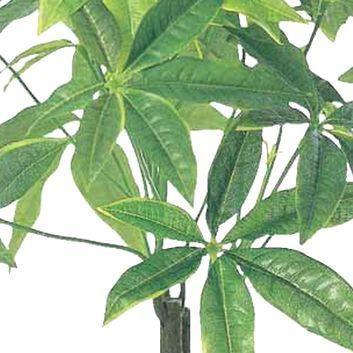 光触媒 観葉植物 造花 人工植物 グリーン・ポット /パキラポットM 252A3536 goodfellow 02