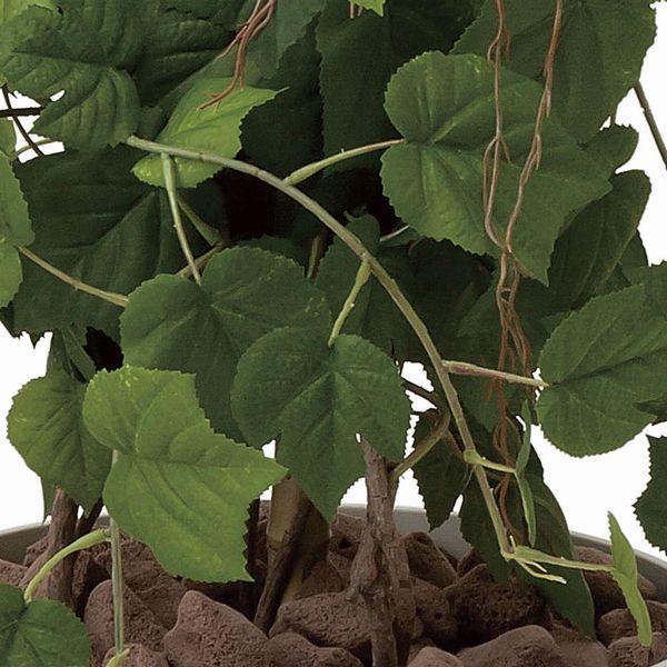 造花 観葉植物 光触媒 インテリアグリーン 鉢植え /グレープツリー150cm 359B350|goodfellow|02