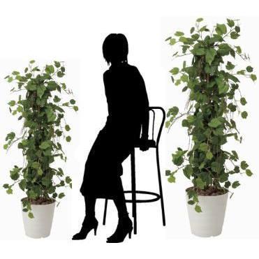 造花 観葉植物 光触媒 インテリアグリーン 鉢植え /グレープツリー150cm 359B350|goodfellow|03