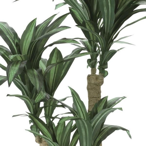 幸福の木 160cm /造花の観葉植物 光触媒(空気浄化) インテリア・グリーン鉢植え /400A300-2917 goodfellow 02