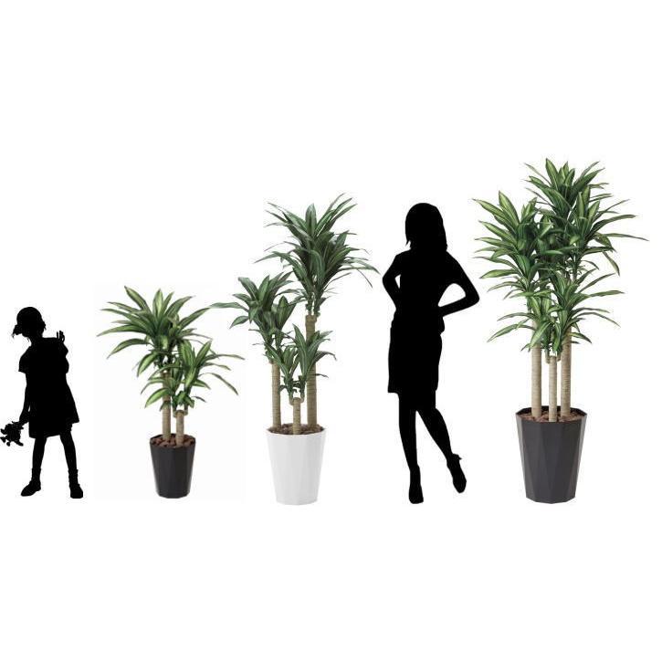 幸福の木 160cm /造花の観葉植物 光触媒(空気浄化) インテリア・グリーン鉢植え /400A300-2917 goodfellow 04