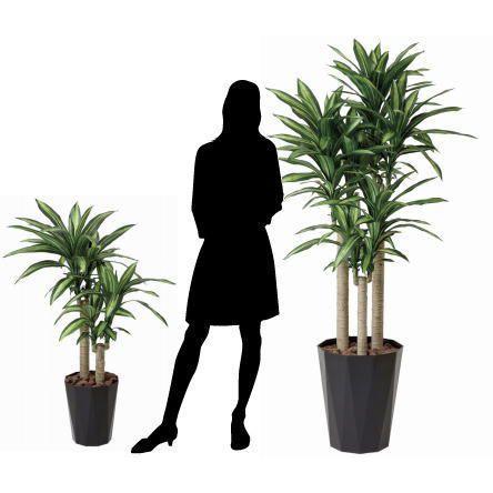 人工観葉植物 鉢植え インテリアグリーン 光触媒 造花 /幸福の木110cm|goodfellow|03