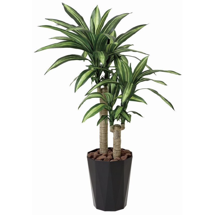 人工観葉植物 鉢植え インテリアグリーン 光触媒 造花 /幸福の木110cm|goodfellow|04