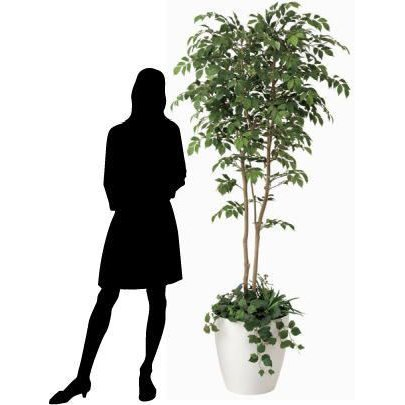 造花 観葉植物 光触媒 インテリアグリーン 鉢植え /マウンテンアッシュ180cm|goodfellow|04