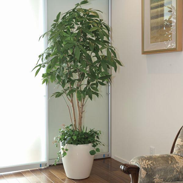 インテリアグリーン 造花 光触媒 人工植物 観葉植物 鉢植え /パキラ 下草付180cm|goodfellow