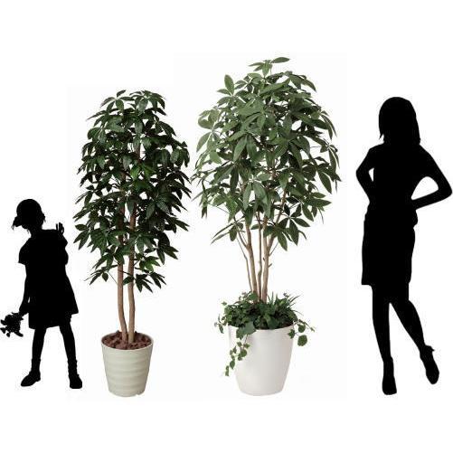 インテリアグリーン 造花 光触媒 人工植物 観葉植物 鉢植え /パキラ 下草付180cm|goodfellow|04