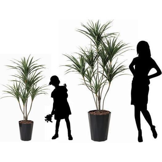 造花 光触媒 人工植物 観葉植物 鉢植え インテリアグリーン /ユッカ 190cm goodfellow 03