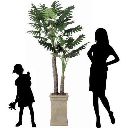 観葉植物 造花 光触媒 人工植物 グリーン /EX.セロームW 200cm|goodfellow|02