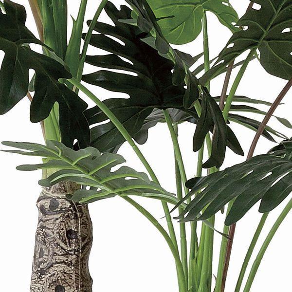 観葉植物 造花 光触媒 人工植物 グリーン /EX.セロームW 200cm|goodfellow|03