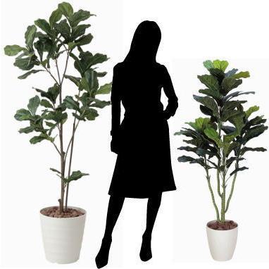 造花 観葉植物 光触媒 インテリアグリーン 鉢植え /カシワバゴム 180cm|goodfellow|03