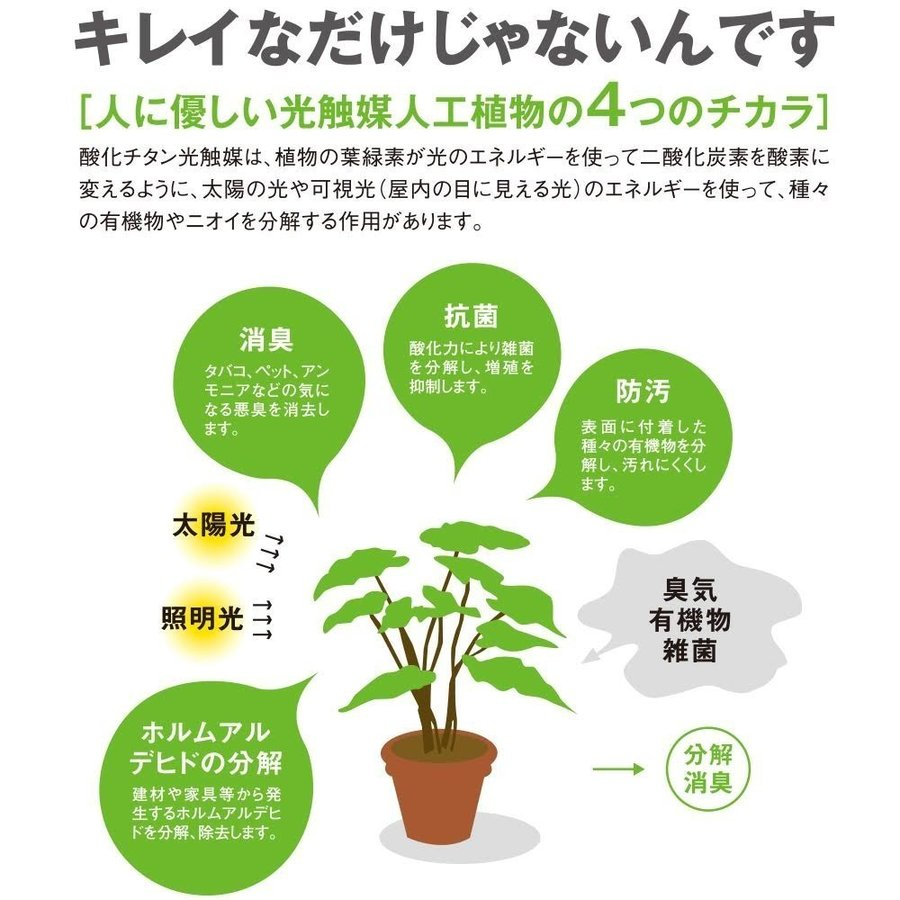 造花 観葉植物 「プミラ」 光触媒 空気清浄 インテリアグリーン 63|goodfellow|04