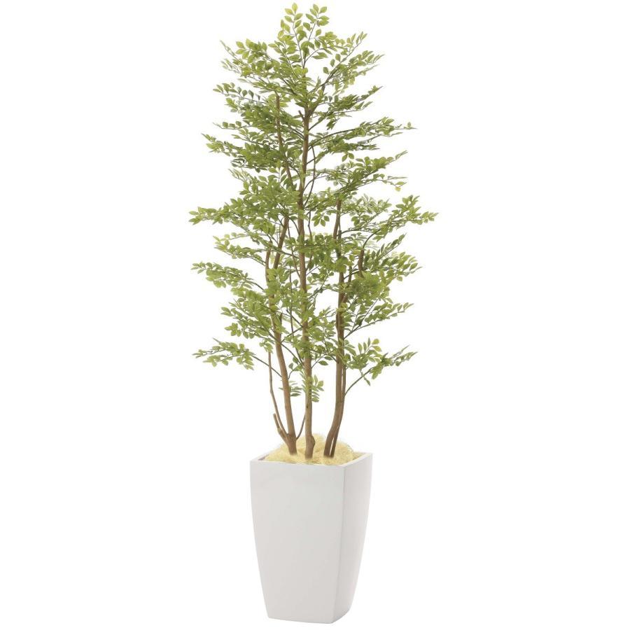 造花 観葉植物 「アーバン・ゴールデンリーフ」 180cm 光触媒(空気浄化) インテリア・グリーン FRP製高級鉢仕様|goodfellow