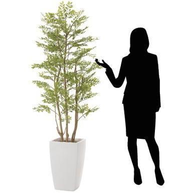 造花 観葉植物 「アーバン・ゴールデンリーフ」 180cm 光触媒(空気浄化) インテリア・グリーン FRP製高級鉢仕様|goodfellow|04