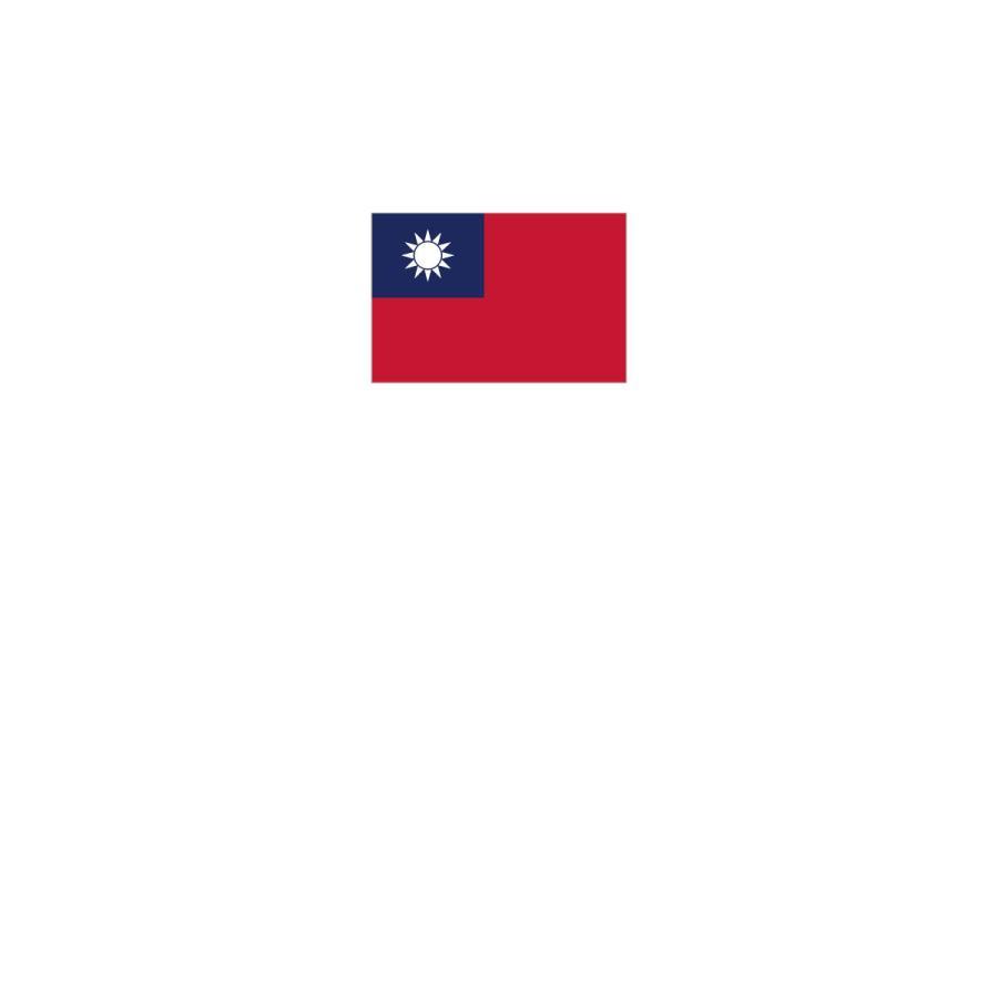 Tシャツ 台湾 国旗|goods-pro|02