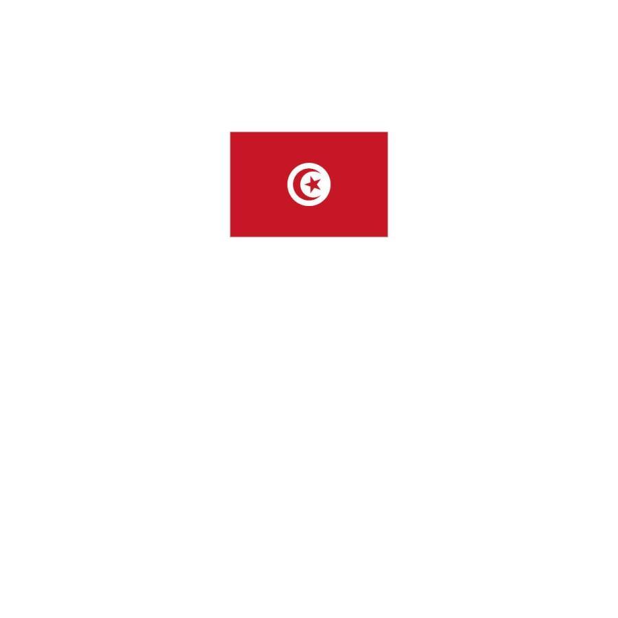Tシャツ チュニジア共和国 国旗|goods-pro|02