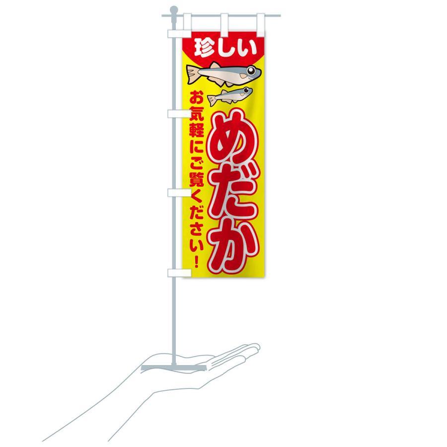 のぼり旗 珍しいメダカいます goods-pro 16
