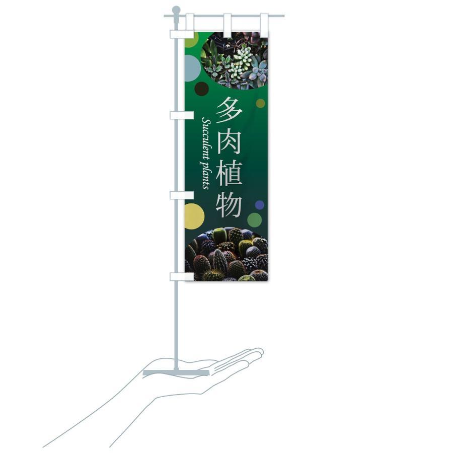 のぼり旗 多肉植物|goods-pro|20