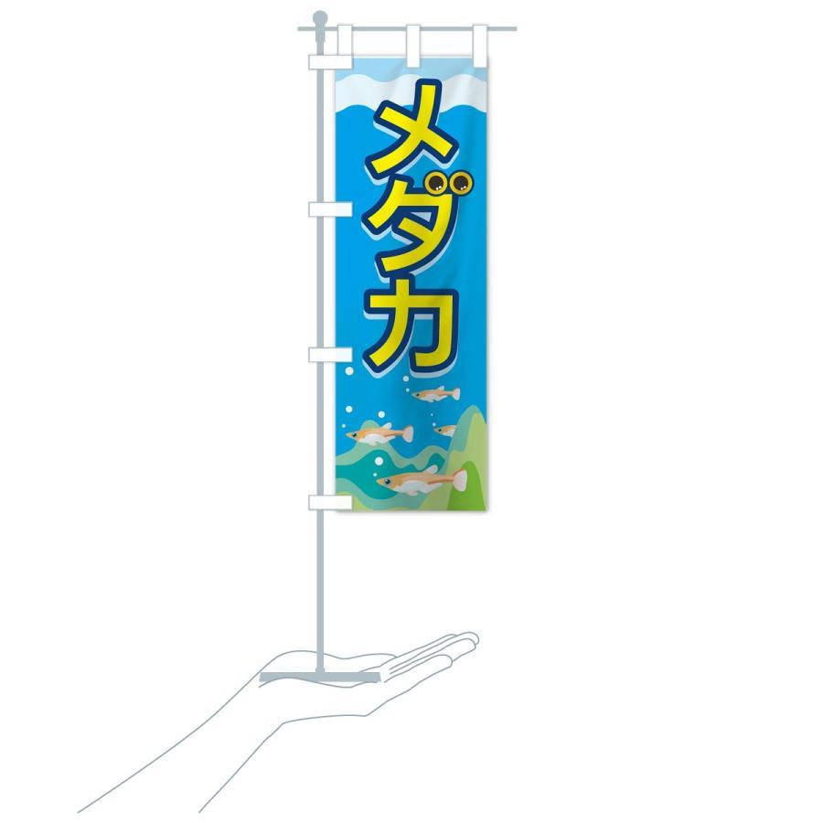 のぼり旗 メダカ|goods-pro|17