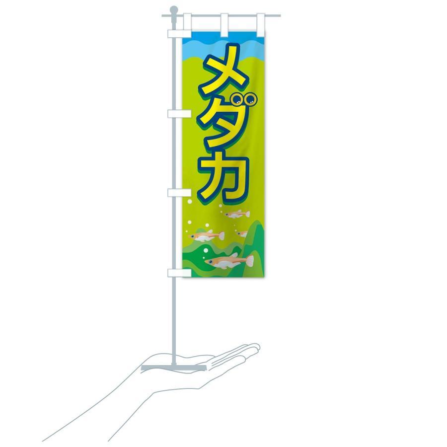 のぼり旗 メダカ|goods-pro|18