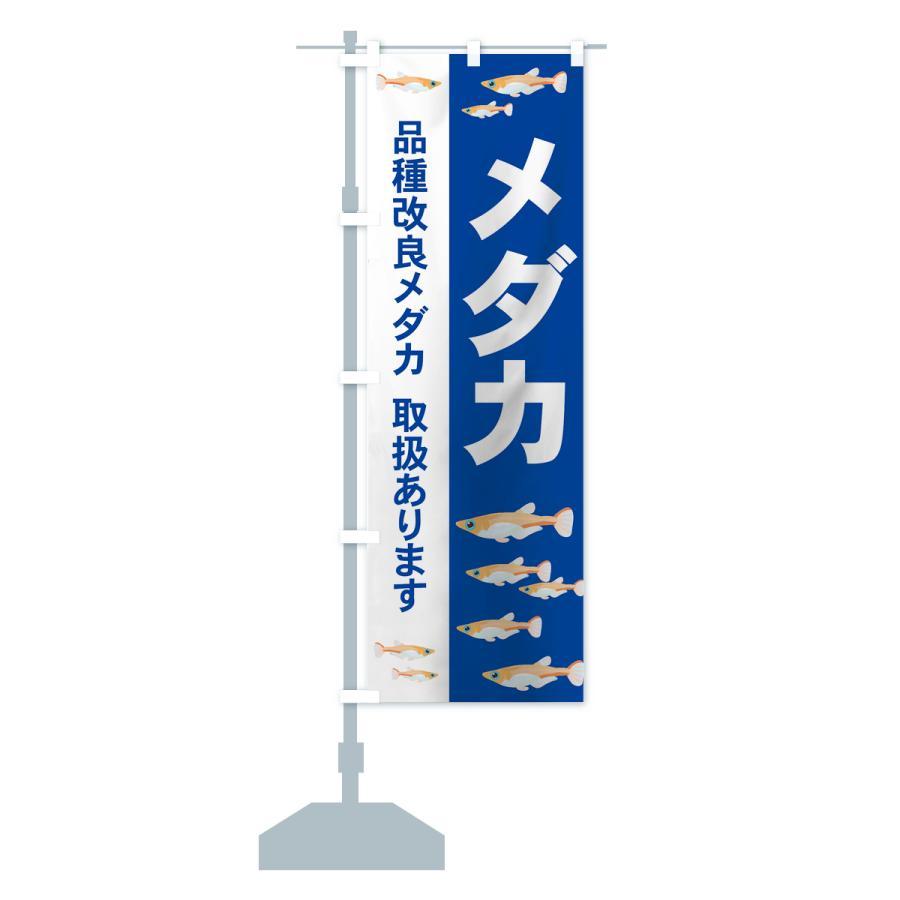のぼり旗 メダカ|goods-pro|14