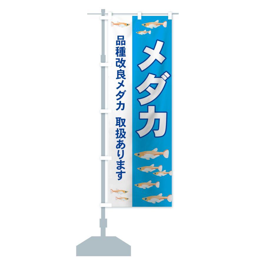 のぼり旗 メダカ|goods-pro|15
