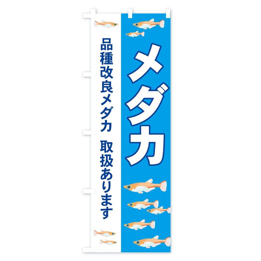 のぼり旗 メダカ|goods-pro|03