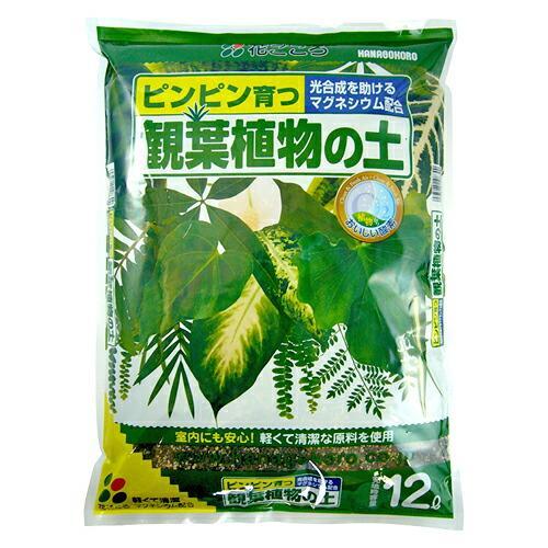 観葉植物の土 12L〔リットル〕【花ごころ】|goopot