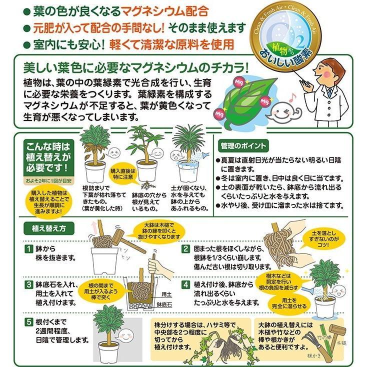 観葉植物の土 12L〔リットル〕【花ごころ】|goopot|02