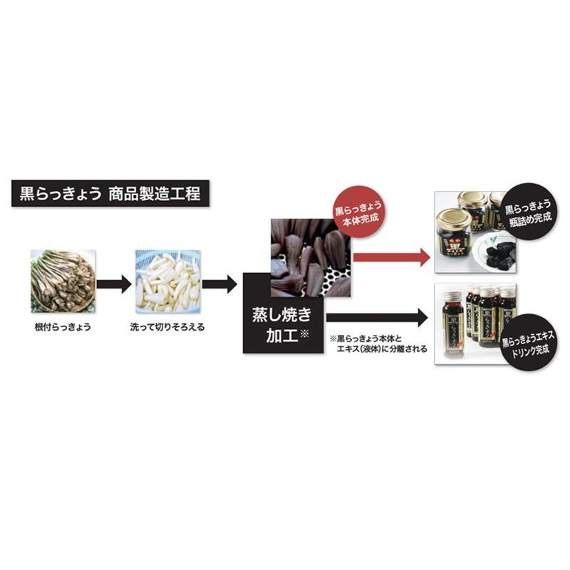 鳥取県産 完熟 黒らっきょう 70g ×1個 無添加 井上農園 産地直送 砂丘 らっきょう ポリフェノール 健康 他のメーカー商品との同梱不可|gottuou-tottori|04