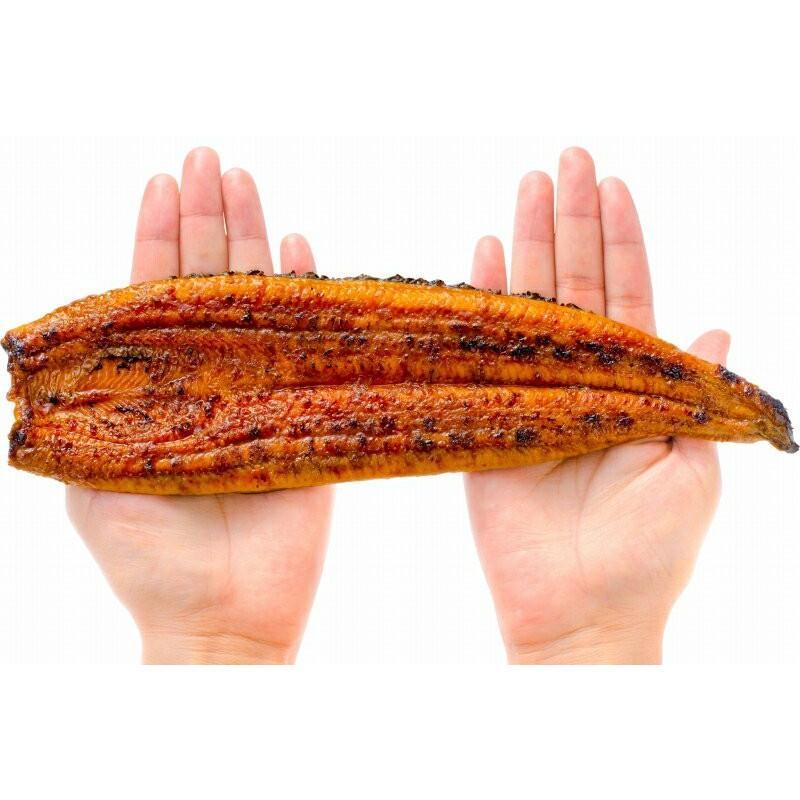 国産うなぎ蒲焼き 大サイズ 平均165g前後×1尾 gourmet-no-ousama 10