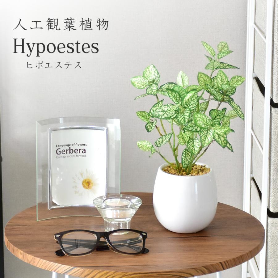 人工植物 観葉植物 光触媒 造花 植物 高級な フェイクグリーン 鉢付き ヒポエステス 殺菌 防臭 北欧 消臭 リビング 在庫一掃売り切りセール プレゼント